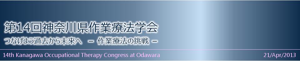 第14回神奈川県作業療法学会